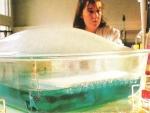 Diagnosticul şi tratamentul hepatitelor virale