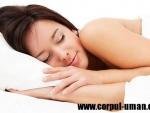 Mecanismele somnului