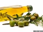 Efectele pozitive ale uleiului de masline