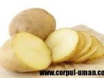 Cartoful ingrasa, daca este consumat in exces
