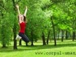 Ce inseamna sa faci gimnastica verde?