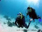 Ce modificari se produc in corp atunci cand ne tinem respiratia sub apa?