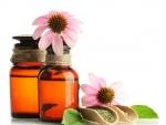 Tratamente cu echinaceea impotriva inflamatiilor gatului