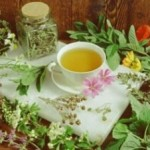 Plante Medicinale Riscuri