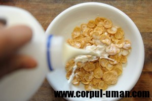 Lapte si cereale la micul dejun
