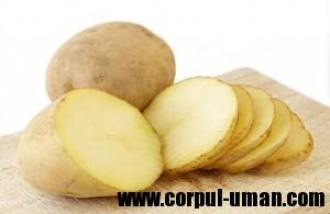 Cartoful ingrasa