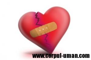Depistare boli de inima