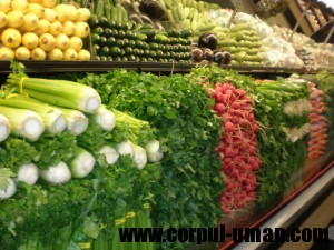 Diete de slabit vegetariene