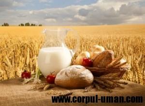 Cereale integrale dieta alcalina