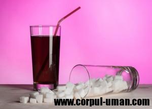 Sucuri dietetice in dieta