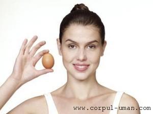 Regimul de slabire cu oua