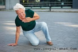 Bolile cardiovasculare la femei
