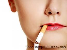 Anti-Fumat in Anglia - video