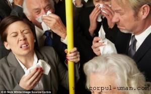 Preventie boli autobuz