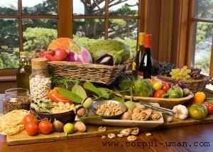 Dieta cu acelasi tip de hrana