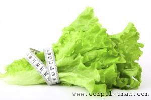 Dieta cu salata verde