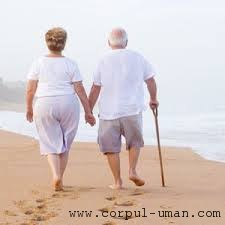 Gena longevitate
