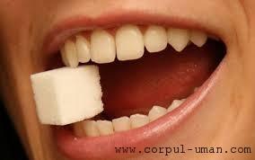 Hipersensibilitatea dentara
