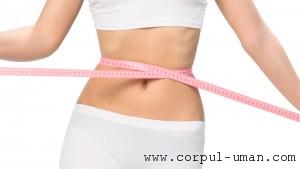 Dieta cu conopida