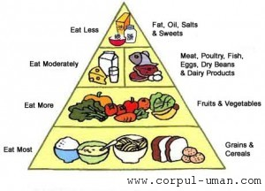 Dieta tip piramida