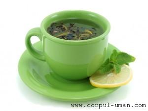 Ceai verde pentru cancer ovarian