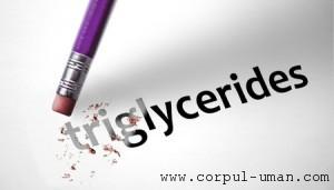 Nivel trigliceride