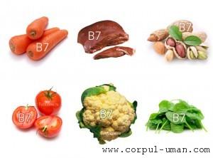 Vitamina B7-biotina